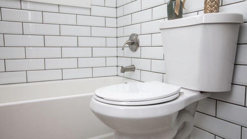 eljer-diplomat-toilet