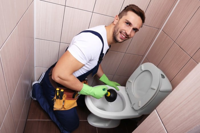 Will Bleach Unclog A Toilet?